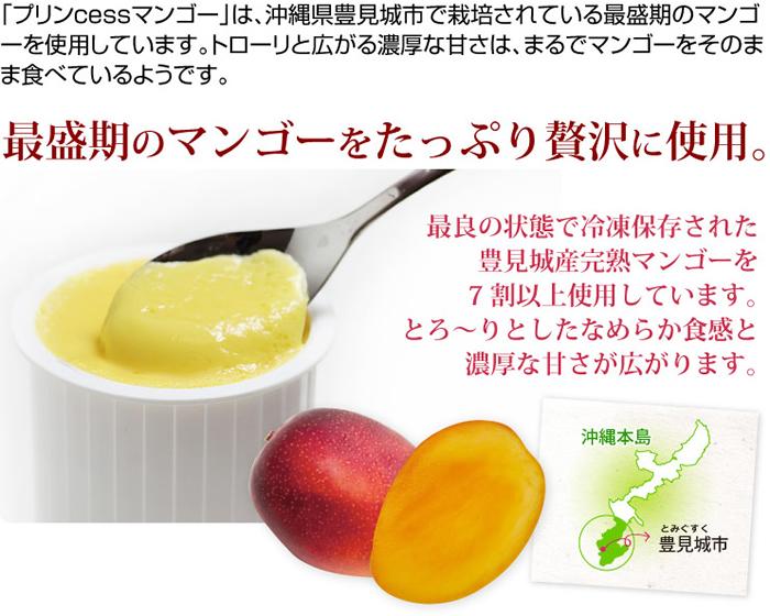 最盛期のマンゴーをたっぷり贅沢に使用